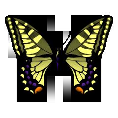 Cynella