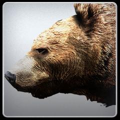 Bearskopff